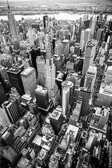 IMG_9853 (kayters) Tags: nyc newyorkcity november blackandwhite fall canon manhattan aerial chryslerbuilding birdseyeview kaytedolmatchphotography