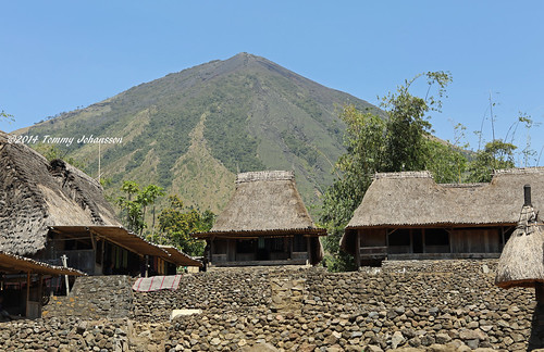 Bena traditional village