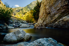 Utah (Nick Bianco) Tags: statepark trees mountains fall utah rivers canyons littlecottonwoodcanyon sandyutah wasatchmountain gaurdmanspass