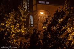 Tormenta (Andrs Guerrero) Tags: storm rain drops lluvia wind viento gotas tormenta raindrops getafe proyecto365