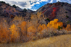 Fall Yellows and Reds (http://fineartamerica.com/profiles/robert-bales.ht) Tags: blue trees red usa beautiful beauty leaves yellow horizontal creek forest wow spectacular landscape utah photo scenery colorful fallcolor emotion superb fallcolors awesome fineart scenic surreal environmental peaceful hike hills harmony cottonwood environment sensational gorge deciduous inspirational spiritual sublime drama magical range magnificent inspiring sagebrush haybales stupendous spectacle dramtic uath canonshooter tranquilly glorioustree robertbales