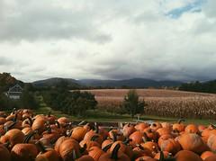 Happy Fall (ash_hatch) Tags: vacation mountains pumpkins northcarolina itsfall vsco