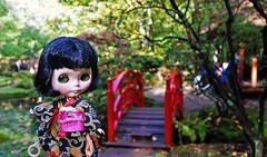Clingendael. (Athanassia) Tags: autumn doll herfst denhaag pop blythe takara tomy hasbro 2014 cwc clingendael tsuyu japansetuin rainydayparade