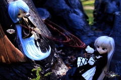 The Cold Will Take You! (dreamdust2022) Tags: school cute girl beautiful loving dark death sadness pain doll pretty princess little sweet dal pirate hate passion pullip charming magical deadly calista suigintou darkangle