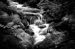 At the Bottom of the Canyon BW (Tortured Mind) Tags: longexposure autumn forest suomi zoom brook fi nikkor dslr 32 ratio 18200mmf3556 tuusniemi pohjoissavo d7000