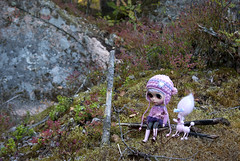 Outdoors (helmitarha) Tags: autumn forest finland doll handmade blythe custom vampoodle ulanna