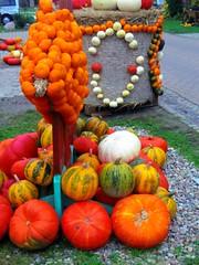 2014-10-20 Kremmen 07 (dks-spezial) Tags: scheunenviertel kremmen kurbisfest kurbismarkt