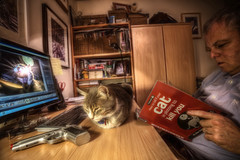 Increasingly Paranoid (D-W-J-S) Tags: light lamp cat canon computer reading book chair gun kill desk screen fisheye read murder paranoid handgun armchair tamron suspicion hdr plot 550ex devious 6d s15 speedlite photomatix 1017mm elenamae2014 2014em