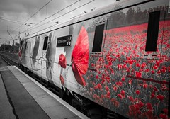 91111 'For The fallen' (deltic17) Tags: travel train war military locomotive ww1 intercity eastcoast naming namingceremony 91111 class91 forthefallen