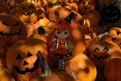 BaD Oct 17 - Jack-O Blythe