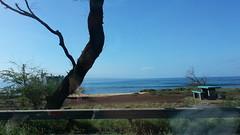 20141109_093340 (dntanderson) Tags: hawaii maui 2014 november09