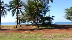 20141109_093215 (dntanderson) Tags: hawaii maui 2014 november09