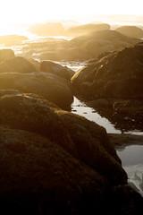golden fade (grafficartistg4) Tags: ocean color texture beach water rock 50mm prime gold golden evening sand rocks soft waves dof bokeh crash dusk wave sharp formation textures splash 32 depth formations crashing splashing