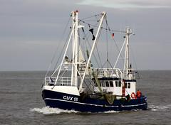 CUX 18 GOEDEKE MICHEL (cuxclipper ) Tags: fishingboat schiff elbe cuxhaven barcodepesca shrimper krabbenkutter fischereifahrzeug cux18 goedekemichel
