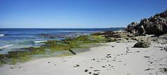 Watermans Bay -view  North
