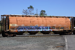 Pasoe Shrek (BombTrains) Tags: road railroad art train bench graffiti paint shrek tag graf rail spray graff freight dmm fr8 nbd yune benching pasoe 810154