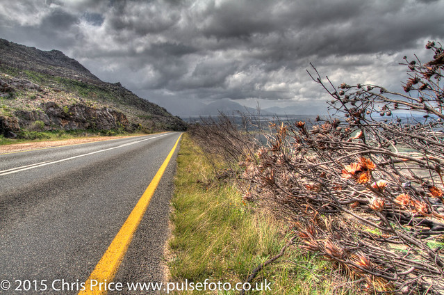 On the Way from Hermanus to Paarl