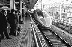 Shinkansen Nagoya (agruebl) Tags: bw blakandwhite japan zeiss train platform contax trainstation nagoya shinkansen highspeedtrain contaxaria