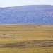 Toolik Lake Research Natural Area/Area of Critical Concern, Alaska