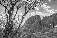 En tiempo de secas (Gayoausius) Tags: paisaje landscape malinalco mxico seco montaa cerro 7dwf blancoynegro blackandwhite monocromtico