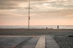 Il metaldetector (Vanda Guazzora) Tags: mare spiaggia passerella bagnino tramonto metaldetector gente corrette natura paesaggio persone predrisaia2016