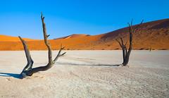 Deadvlei (RonMarlo) Tags: sossusvlei namib namibia afrika landscape landschaft wste desert dnen sanddnen nature natur deadvlei sand africa sandwste