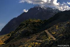 LONESOME (PHOTOROTA) Tags: abid photorota flickr pakistan autumn hindukush nikon d610