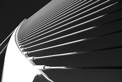 The Harp (gerard eder) Tags: architecture architektur arquitectura calatrava santiagocalatrava ciudaddelasartesyciencias cityofartsandsciences stadtderknsteundwissenschaften world travel reise viajes europa europe espaa spain valencia bridges brcken puentes puentelassutdelor outdoor cityscape stadtlandschaft paisajeurbano
