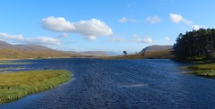 Loch Droma, Highlands of Scotland, Oct 2016 (allanmaciver) Tags: loch droma highlands scotland weather blue sky water hydro scheme wind trees distance rushes scenery allanmaciver