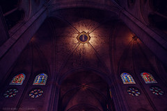 Notre-Dame (Araminta Studio) Tags: city urban detail france paris church architecture interior notredamedeparis cathedral symmetry sym