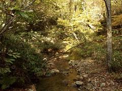 20161023  (cxdsew321) Tags: osaki  autumn   miyagi  nature fall  japan mountain