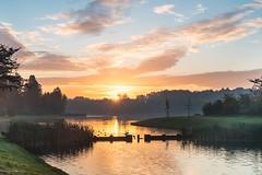 Sunrise at Tervuren park (crispin52) Tags: belgium tervuren sunrise landscape nature colors park nikon