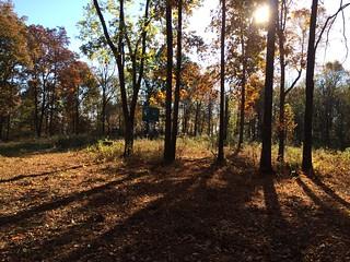 Kentucky Whitetail Hunt 8