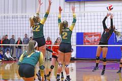 IMG_6700 (SJH Foto) Tags: girls volleyball high school allentown central catholic somerset team teen teenager net battle spike block action shot jump midair