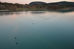 Les gomtres du lac, 05 (RarOiseau) Tags: lac lacduriou saintgenis hautesalpes reflet couchant canard crpuscule lumire calme