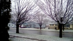 First SNOW!! (Maenette1) Tags: first snow 2016 street houses trees menominee uppermichigan flicker365