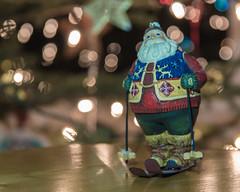 Finding Joy (skokipass50) Tags: bokeh christmas december