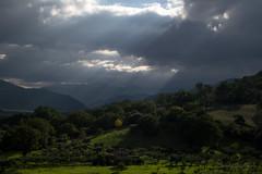 Pioggia di Luce / Rain of light (Shooting in RAW) Tags: pollino luce panorama paesaggio passeggiata piante gita flickr estrellas