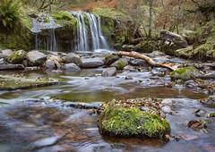 Blaen Y Glyn Upstream