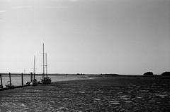 Jekyll Island low tide (jbrighamphotography) Tags: nikonf photomic ftn nikon nikkor kodak trix jekyllisland lowtide filmphotography naturephotography