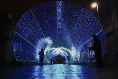 Hay Hill Tunnel of Light (steven.kemp) Tags: norwich christmas lights hay hill tunnel