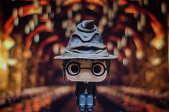 Please Not Slytherin (mircoLITRATO) Tags: funko harry potter lordoftherings hobbit pop vinyl toy action figure figures collection photoygraphy mini bobble head lego minifigure dc marvel movie geek culture trump clinton groot wwe ufc comic book superhero child
