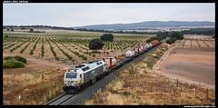 TECO en Casas de las Monjas (javier-lopez) Tags: ffcc railway train tren trenes adif renfe mercancas teco contenedor contenedores 333 3333 prima sgs sgss sgnss mmc huktra ubc murciacargas madridabroigal casasdelasmonjas 13072016