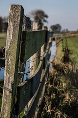 Wooden fence (EpicIvo) Tags: ifttt 500px fence meadow fall cold grass wood texture trees cloud sky water selective focus barbed wire middendelfland netherlands