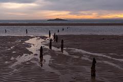 Defenceless 3 (o1373k) Tags: beach ww2 fife firthofforth wintermorning inchkeith
