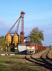628 215 H-START (...sneken a vonat) Tags: 161101 628 628215 628215start bahn bacsbokod bcsbokod cukorrpa cukorrpaszezon2016 eisebahn luganszk m62 m62215 mav mozdony mv rail railway szergej tehervonat train tren trenur trenuri vaggonstypeeas vast vlacik vlak vlaky vonat zeleznice locationbacsbokod 215 rakottrepa2016 rakottrepa railroad line154