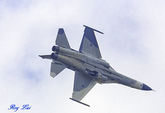 IMG_1729 (CBR1000RRX) Tags: 650d canon taiwan airforce aircraft warmachine weapon missile fighter