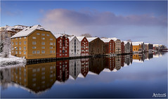Clear Winter, Trondheim, Norway (AdelheidS photography) Tags: adelheidsphotography adelheidsmitt adelheidspictures norway norge noorwegen norwegen noruega norvegia nordic norvege nidelva trondheim trøndelag nidaros river reflection reflect snow winter winterbeauty water building woodenhouses riverfront city cityscape scandinavia colours colorful wow