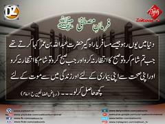 9-12-16) dz group (zaitoon.tv) Tags: mohammad prophet islamic hadees hadith ahadees islam namaz quran nabi zikar