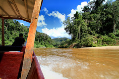 Taman Negara (Phalinn Ooi) Tags: batek orang asli taman negara national park kuala tahan jerantut pahang malaysia nature jungle rainforest hutan hujan alam hijau boat sungai river tembeling people bukit terisek canopy walk lata berkoh dedari mutiara resort potrait travel wanderlust explore cuti jalan holiday relax tour dslr canon eos 7d family outdoor night sigma rapid shooting trail flora fauna asia waterfall landscape beautiful
